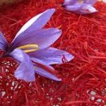 عصاره گیاه زعفران سراج