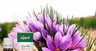 صادرات عصاره زعفران زردبند قطره ارزان