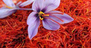رنگ زعفران قاینات