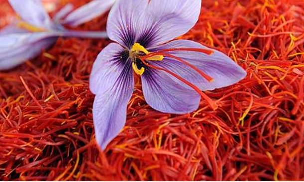 زعفران خوش رنگ