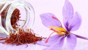 عصاره زعفران سوینچ در بازار های جهانی