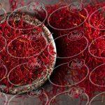 فروش زعفران عمده به تاجران جنوب کشور